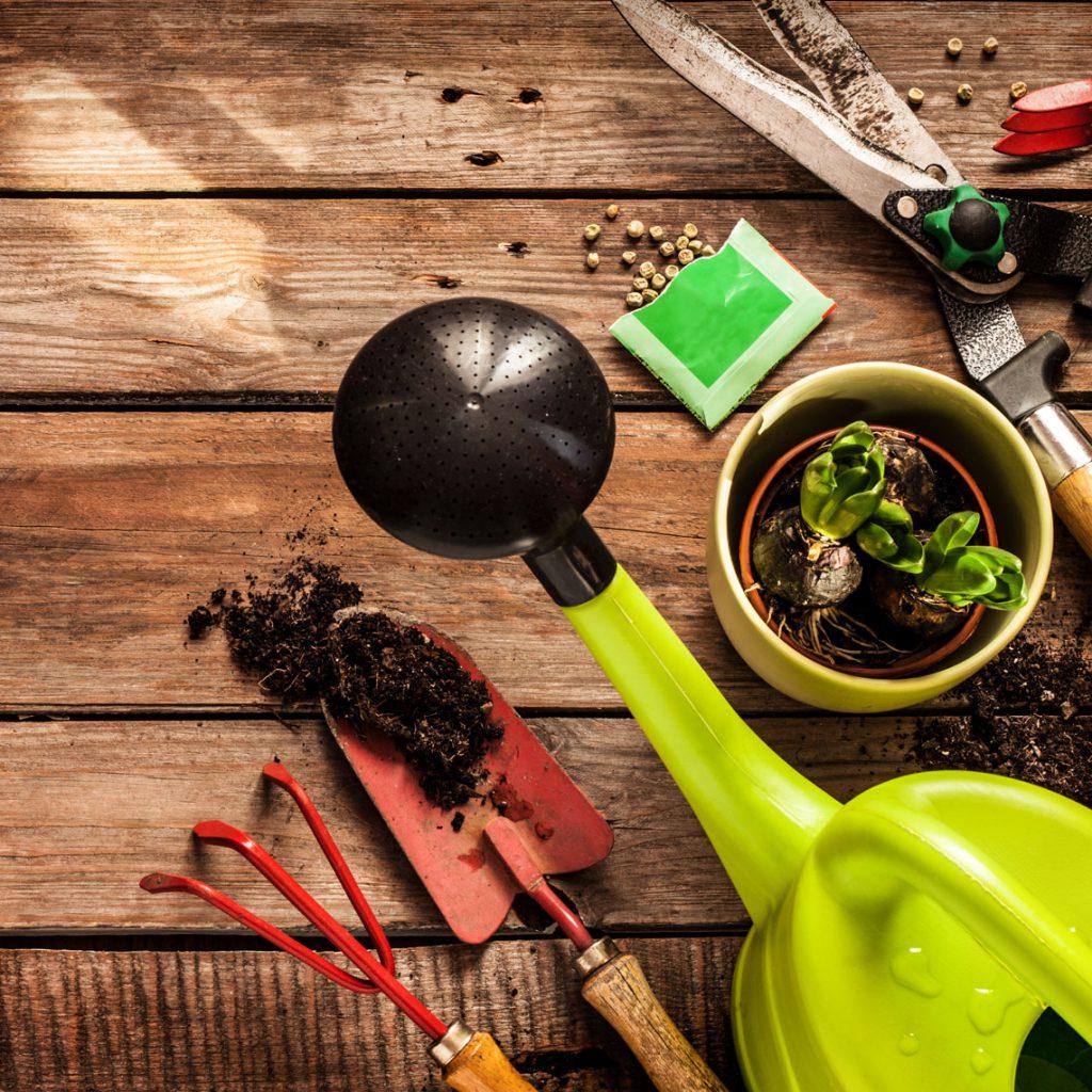 Gartenpflege mit Labau als ihren Pflegespezailisten.